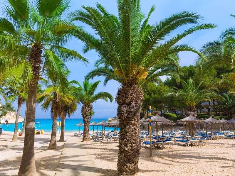 Beach of Calvia