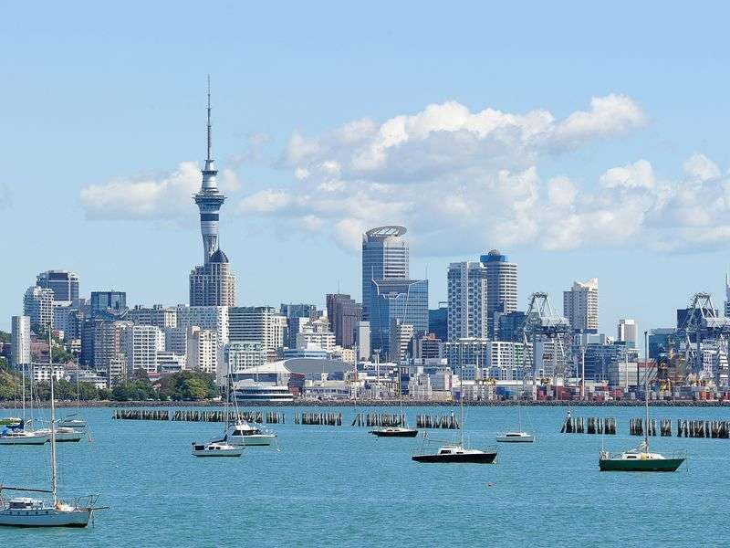 Boats in Auckland