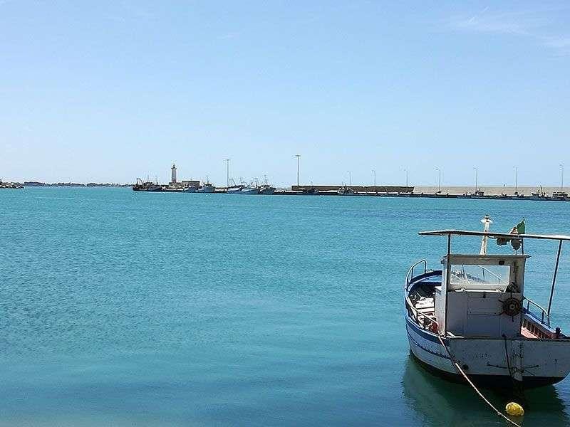 Boats in Marsala Marina