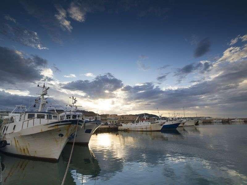 Boats in San Benedetto del Tronto