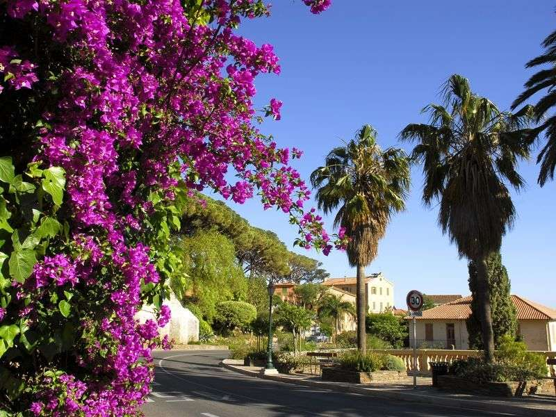 Holidays in Bormes-les-Mimosas