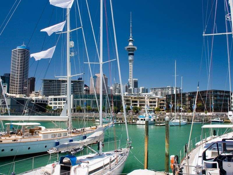 Marina in Auckland