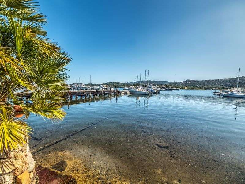 Port in Cannigione