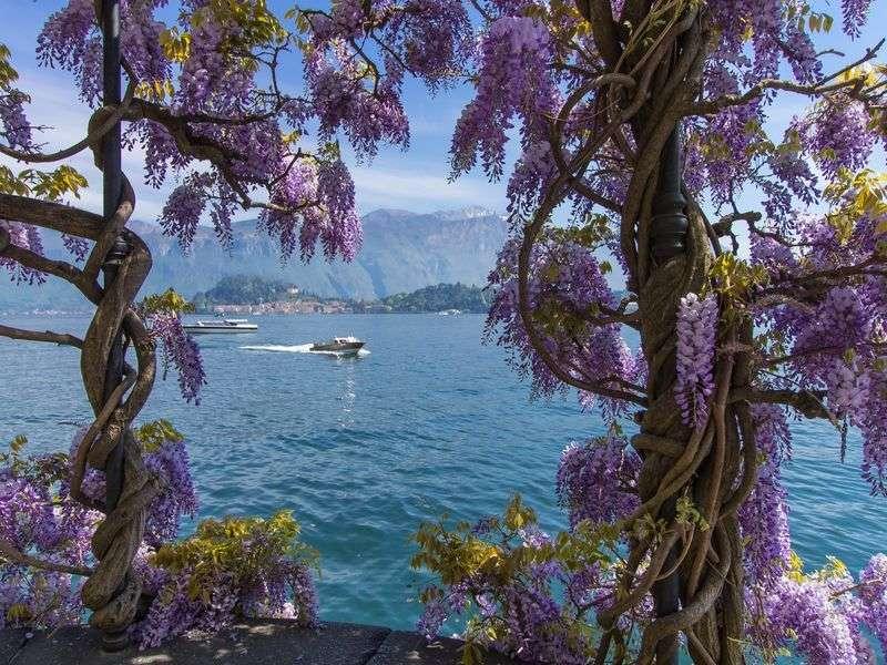 Sailing in Garda