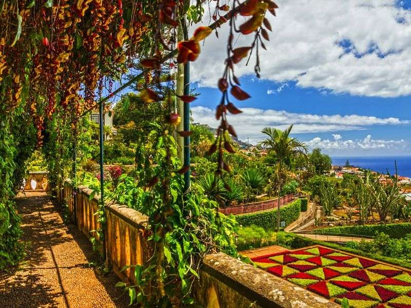Holidays in Funchal