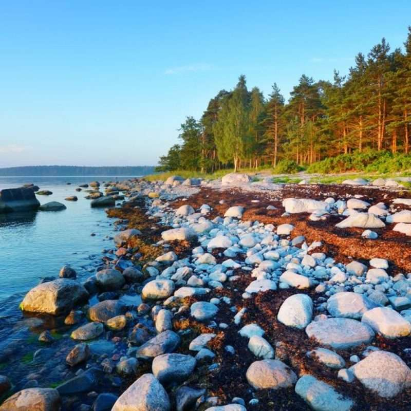 Boat hire Estonia