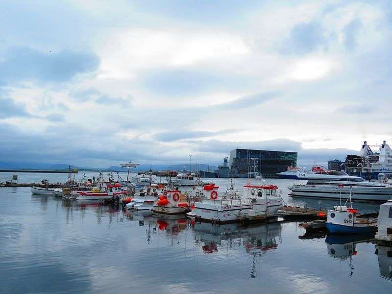 Reykjavik boat tours