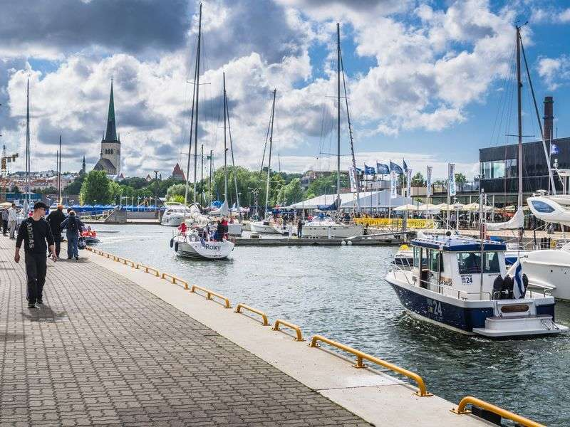 Yacht week in Tallinn