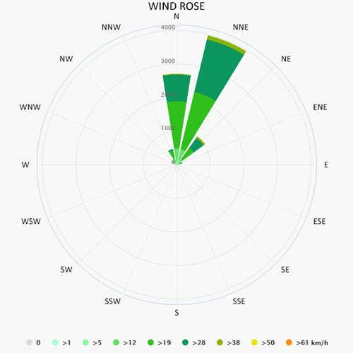 Wind rose in Palmeira