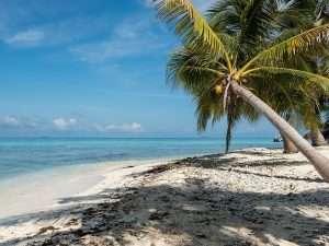 Coast of Belize