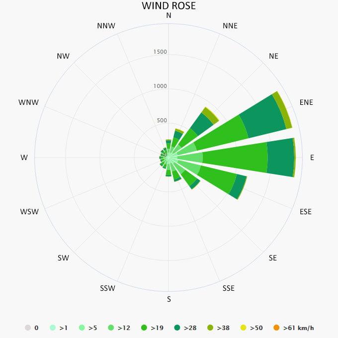 Wind rose in Bahamas