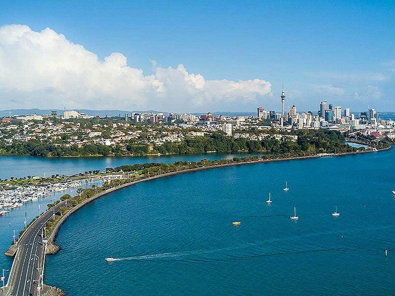 Auckland yacht week