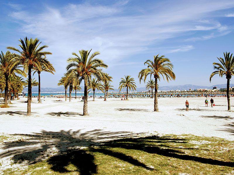 Coast of El Arenal