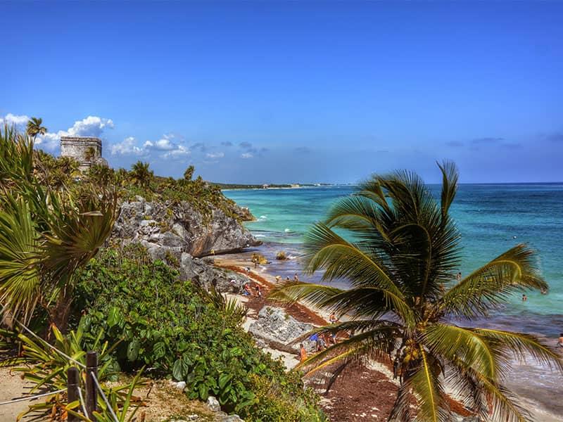 Coast of Playa Del Carmen